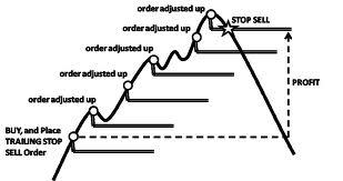 Exness'te Nasıl Giriş Yapılır ve Forex ticaretine nasıl başlanır